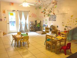 seed classroom